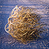 Tumbleweed forum user